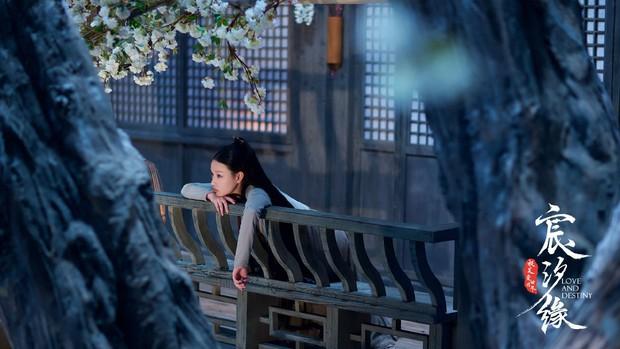 Được kì vọng sẽ là bom tấn Hoa Ngữ mùa hè, Thần Tịch Duyên vẫn bị netizen chê: Bê nguyên phim Dương Mịch vào à? - Ảnh 14.