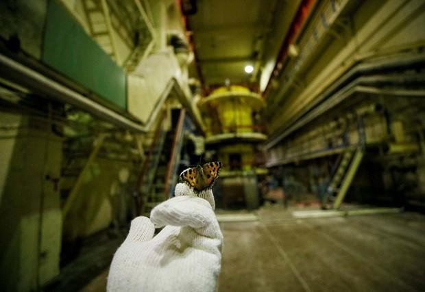 'Vùng chết chóc' Chernobyl sẽ trở thành điểm du lịch - Ảnh 2.