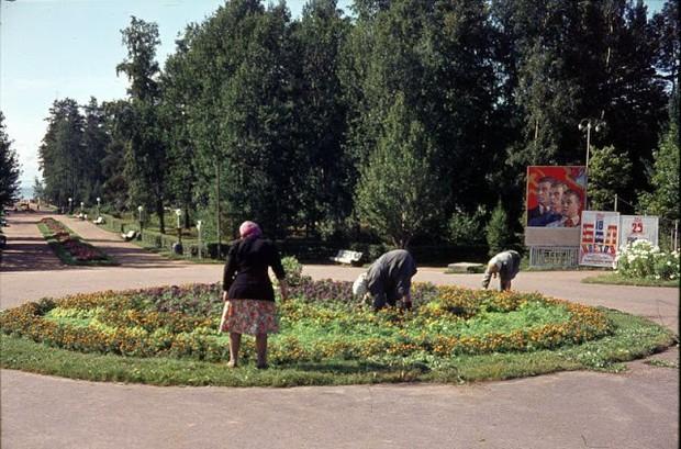 Ảnh màu ấn tượng về đường phố Leningrad những năm 1960 - Ảnh 3.