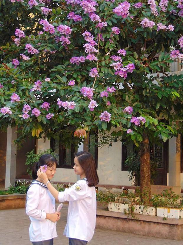 Nữ sinh Nam Định đạt điểm 10, thủ khoa môn Lịch sử năm 2019: Phải học kỹ kiến thức cơ bản, có tư duy phản biện để chọn câu đúng - Ảnh 2.