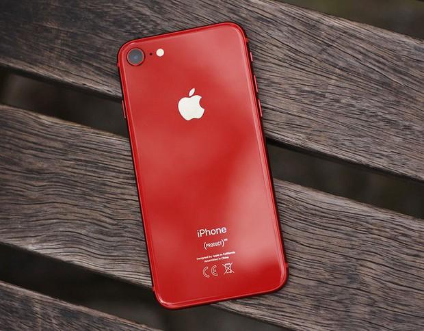 Tin rò rỉ nói Apple đang chuẩn bị một chiếc iPhone kế nhiệm cho SE, và đó sẽ là lá bài vô cùng quan trọng cho năm 2020 - Ảnh 1.