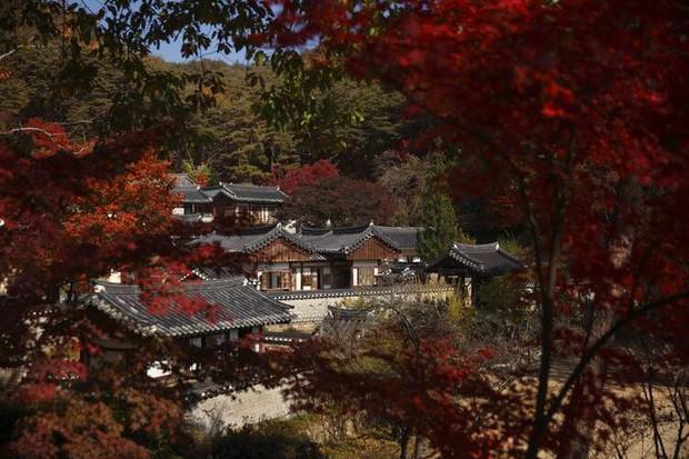Khui ngay 15 di sản thế giới mới vừa được UNESCO công nhận, nhiều địa điểm du lịch nổi tiếng châu Á cũng góp mặt - Ảnh 15.