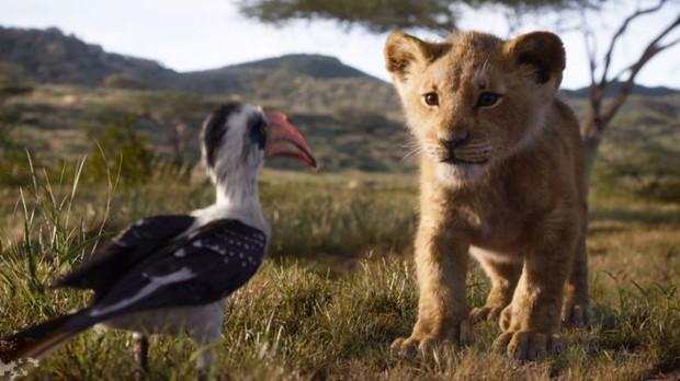 10 chi tiết cải biên gây ấn tượng mạnh của The Lion King phiên bản 2019: Số 9 bắt trend nữ quyền rất lẹ - Ảnh 1.