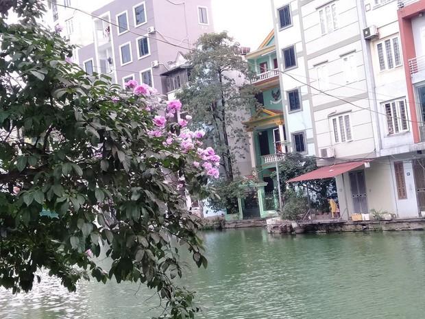 """Xem bức ảnh được cho là """"tiểu Venice"""" giữa lòng Hà Nội, dân mạng ngán ngẩm thay nhau """"bóc phốt"""" trò photoshop quá đà! - Ảnh 9."""