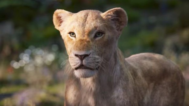 7 bài học cuộc sống rút ra từ The Lion King: Rốt cuộc 2 con heo và chồn hát Hakuna Matata có ý nghĩa gì? - Ảnh 5.