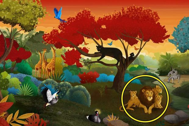 Con vật đầu tiên bạn nhìn thấy trong tấm ảnh này sẽ hé lộ điều thực sự đang khiến bạn băn khoăn lúc này - Ảnh 4.