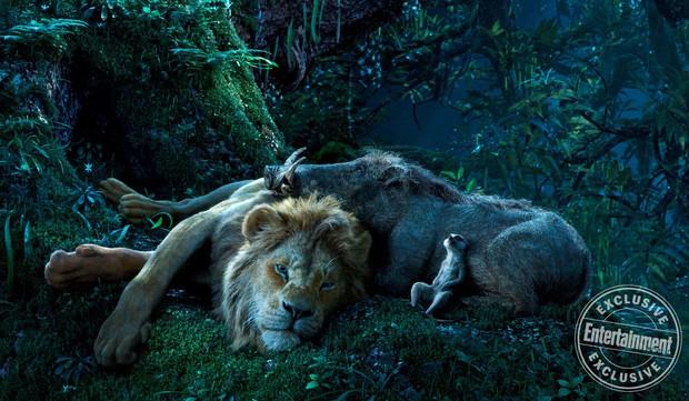 7 bài học cuộc sống rút ra từ The Lion King: Rốt cuộc 2 con heo và chồn hát Hakuna Matata có ý nghĩa gì? - Ảnh 3.