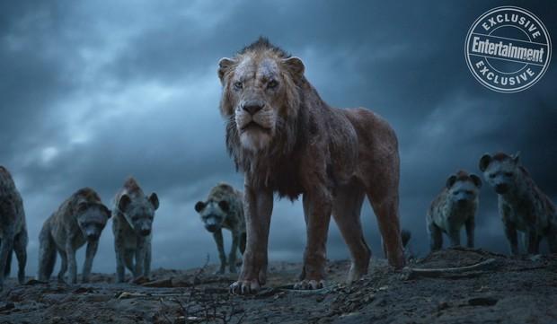 10 chi tiết cải biên gây ấn tượng mạnh của The Lion King phiên bản 2019: Số 9 bắt trend nữ quyền rất lẹ - Ảnh 10.