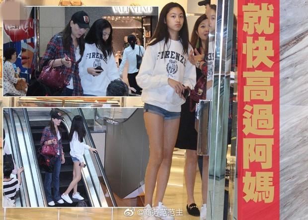 Kiều nữ 14 tuổi nhà ông hoàng phim 18+ Hong Kong gây sốt: Cao 1m8, chân dài miên man không có đối thủ - Ảnh 5.