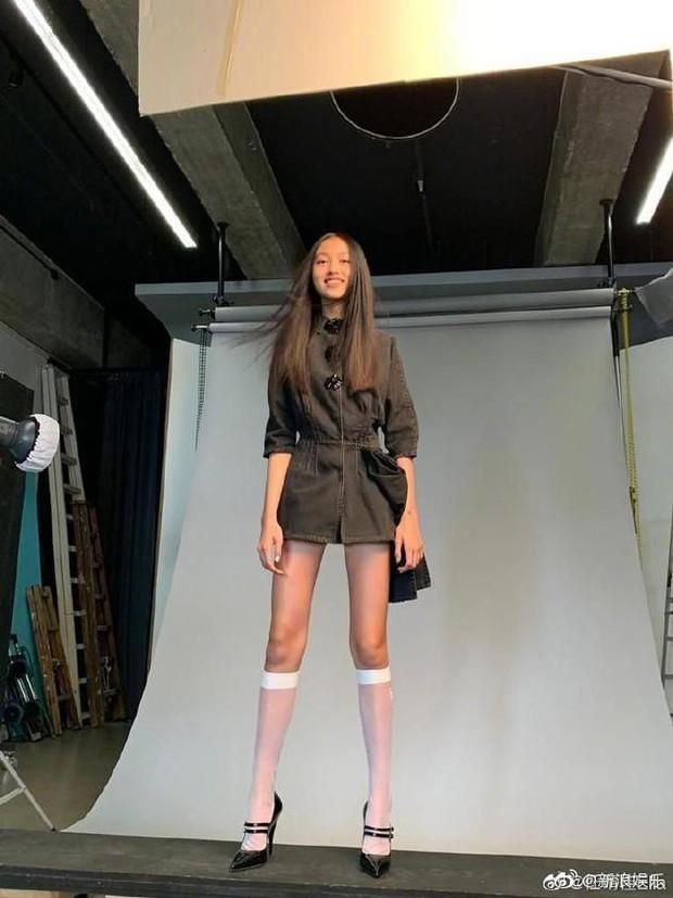Kiều nữ 14 tuổi nhà ông hoàng phim 18+ Hong Kong gây sốt: Cao 1m8, chân dài miên man không có đối thủ - Ảnh 1.