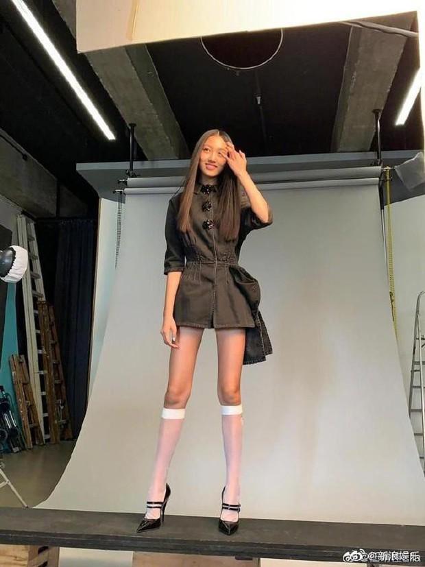 Kiều nữ 14 tuổi nhà ông hoàng phim 18+ Hong Kong gây sốt: Cao 1m8, chân dài miên man không có đối thủ - Ảnh 2.
