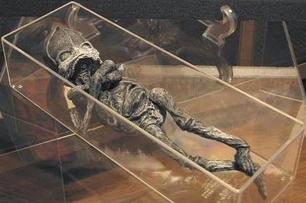 """Hé lộ thân phận thực sự về sinh vật lạ nghi là """"em bé ngoài hành tinh"""" mang lời nguyền chết chóc từng gây rúng động cách đây 23 năm - Ảnh 1."""