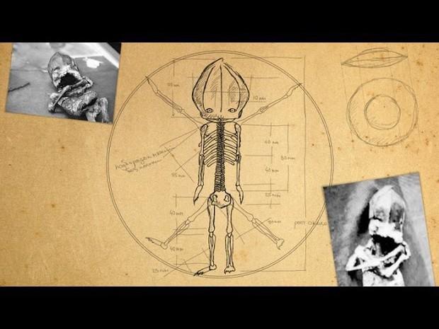 """Hé lộ thân phận thực sự về sinh vật lạ nghi là """"em bé ngoài hành tinh"""" mang lời nguyền chết chóc từng gây rúng động cách đây 23 năm - Ảnh 4."""
