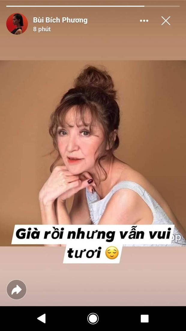 H'Hen Niê, Bích Phương và nhiều sao Việt hào hứng tham gia trào lưu già hóa: Chẳng thể ngờ ai cũng đẹp lão đến lạ! - Ảnh 2.