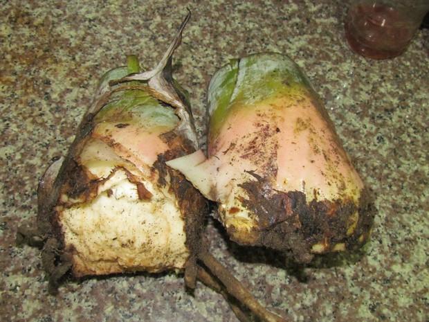 Triệt để như người Việt Nam: Cả cây chuối to vậy mà đến 2/3 dùng cho việc... ăn - Ảnh 3.