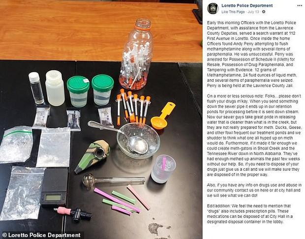 Mỹ: Tội phạm xả ma túy xuống bồn cầu làm cá sấu bị nghiện - Ảnh 1.