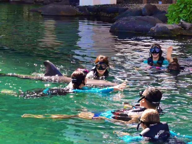 """Xem loạt hình nghỉ dưỡng ở Hawaii của BLACKPINK xong, các fan chỉ thấy """"chua xót"""" vì… thua cả một chú cá heo - Ảnh 10."""