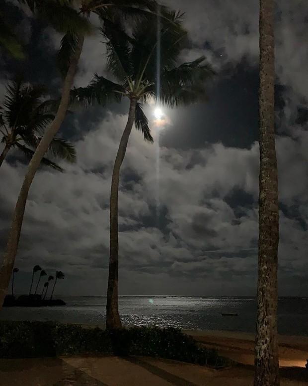 """Xem loạt hình nghỉ dưỡng ở Hawaii của BLACKPINK xong, các fan chỉ thấy """"chua xót"""" vì… thua cả một chú cá heo - Ảnh 5."""