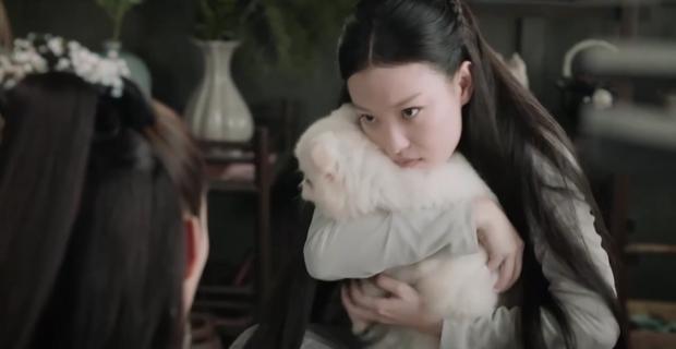 Thân là thần, Trương Chấn (Thần Tịch Duyên) vẫn khốn đốn vì một con chó trần gian - Ảnh 10.
