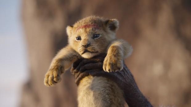 Bạn có biết Disney đốt 6 ngàn tỉ đổi lấy bầy thú hoang đẹp siêu thực trong The Lion King? - Ảnh 2.
