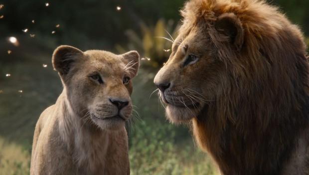 Bạn có biết Disney đốt 6 ngàn tỉ đổi lấy bầy thú hoang đẹp siêu thực trong The Lion King? - Ảnh 6.