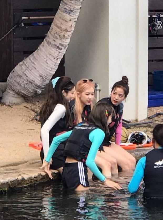 BLACKPINK mặc đồ bơi kín mít ở Hawaii chính là chúng ta mỗi khi đi biển, ước được diện bikini nóng bỏng nhưng toàn làm ngược lại - Ảnh 1.