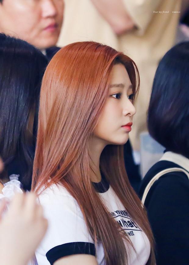 Mừng bài mới có 40 triệu lượt xem, IZ*ONE ra MV đặc biệt: Wonyoung, Sakura lép vế trước mỹ nhân bị chê bất tài - Ảnh 3.