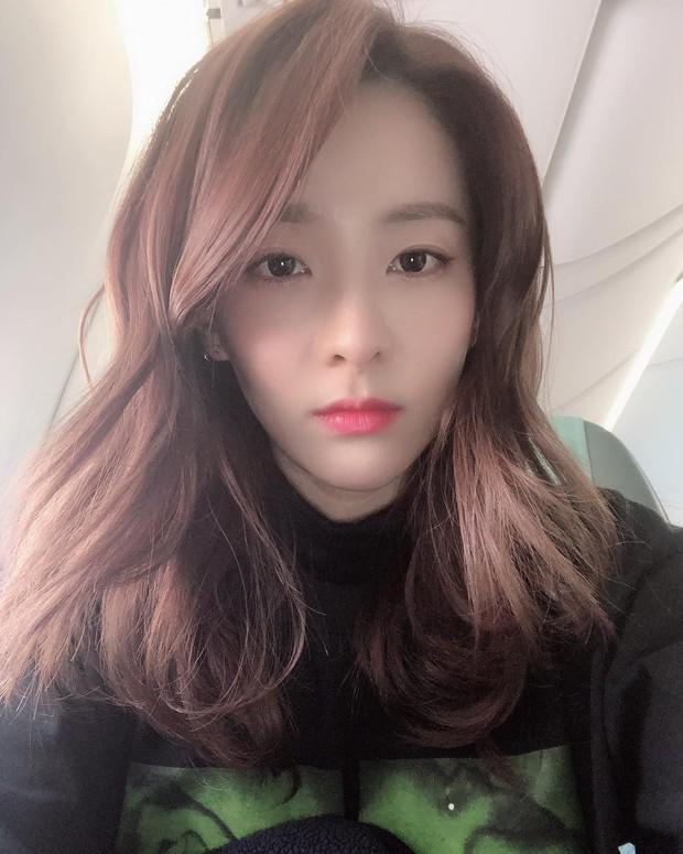 Từng bị so sánh, nhan sắc ăn thịt Đường Tăng của Dara so với Jisoo (BLACKPINK) kém 11 tuổi gây bất ngờ sau 1 năm - Ảnh 5.