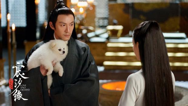 Có Nghê Ni - Trương Chấn cũng không cứu nổi Thần Tịch Duyên thoát mác bom xịt nhất mùa hè này - Ảnh 9.