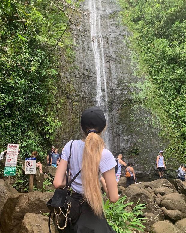 Dù YG có giữ bí mật tới mức nào thì lịch trình ở Hawaii của BLACKPINK vẫn được tiết lộ gần như toàn bộ bởi cô nàng này - Ảnh 13.