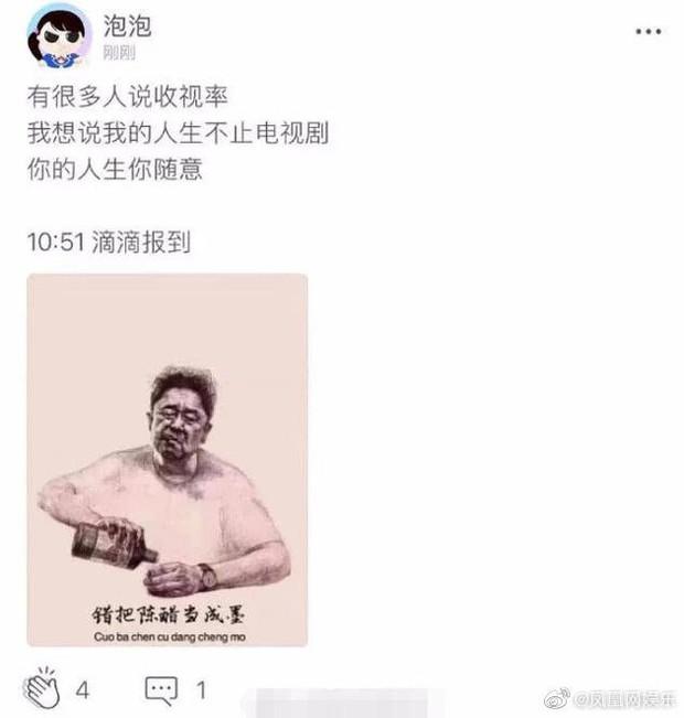 10 năm ngủ quên trên chiến thắng của Trịnh Sảng: Từ diễn viên triển vọng nay học đòi làm hot girl mạng? - Ảnh 5.