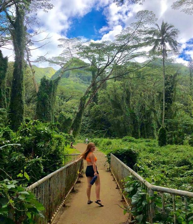 Dù YG có giữ bí mật tới mức nào thì lịch trình ở Hawaii của BLACKPINK vẫn được tiết lộ gần như toàn bộ bởi cô nàng này - Ảnh 16.