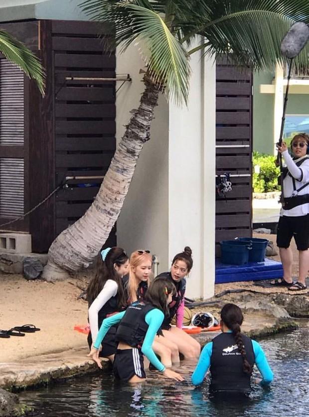 Dù YG có giữ bí mật tới mức nào thì lịch trình ở Hawaii của BLACKPINK vẫn được tiết lộ gần như toàn bộ bởi cô nàng này - Ảnh 2.