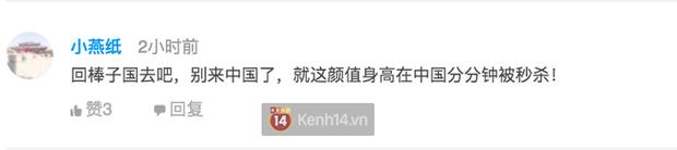 Song Hye Kyo tấn công thị trường Trung Quốc bằng 2 hợp đồng lớn nhưng phản ứng của Cnet lại gắt đến bất ngờ - Ảnh 6.
