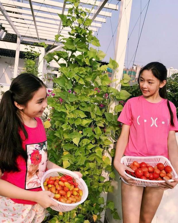 Công chúa 14 tuổi nhà Quyền Linh thả dáng với bikini, ai cũng tấm tắc khen dáng vóc như Hoa hậu tương lai - Ảnh 8.