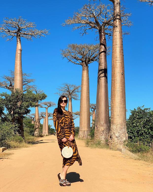 Dính phải lời nguyền phải mọc ngược, rừng cây ở Madagascar nay lại trở thành điểm check-in xịn xò của giới blogger du lịch - Ảnh 6.