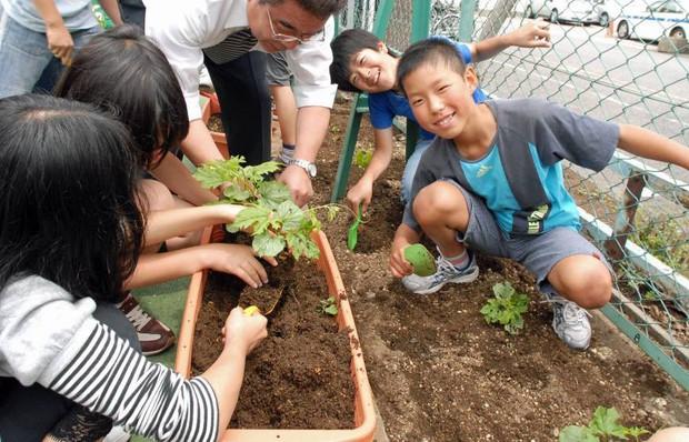 Những điều khiến trẻ em Nhật Bản có sức khỏe tốt nhất thế giới, người lớn cũng nên học tập - Ảnh 4.