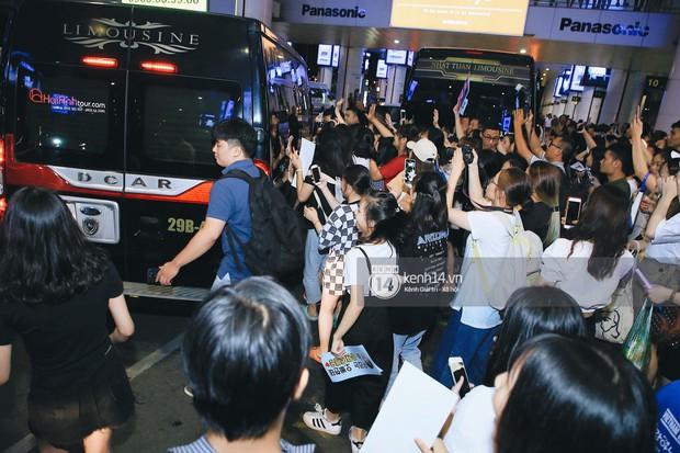 Tài tử Ji Chang Wook và Suju đã có mặt ở sân bay Nội Bài: Điển trai cực phẩm, nhìn biển fan Việt đến đón mà chóng mặt - Ảnh 18.