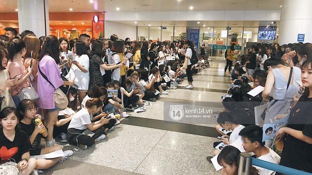 Tài tử Ji Chang Wook và Suju đã có mặt ở sân bay Nội Bài: Điển trai cực phẩm, nhìn biển fan Việt đến đón mà chóng mặt - Ảnh 19.