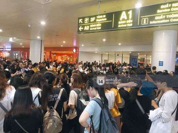 Tài tử Ji Chang Wook và Suju đã có mặt ở sân bay Nội Bài: Điển trai cực phẩm, nhìn biển fan Việt đến đón mà chóng mặt - Ảnh 17.