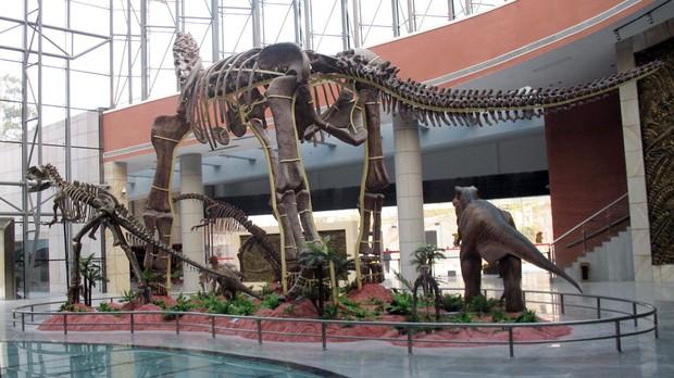 Đang đi chơi tung tăng bên bờ sông, cậu bé 9 tuổi phát hiện ra trứng khủng long 600 triệu năm khiến cả MXH phải trầm trồ - Ảnh 3.