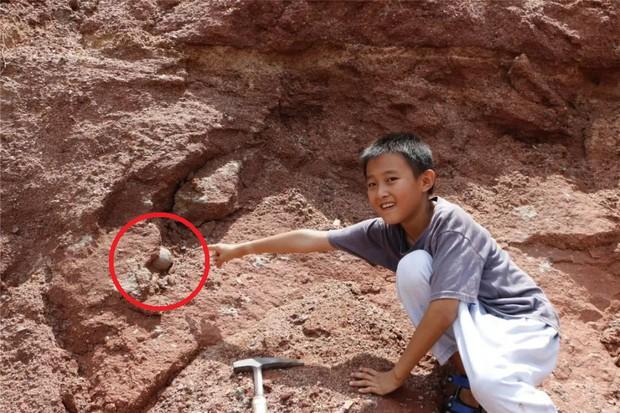 Đang đi chơi tung tăng bên bờ sông, cậu bé 9 tuổi phát hiện ra trứng khủng long 600 triệu năm khiến cả MXH phải trầm trồ - Ảnh 1.