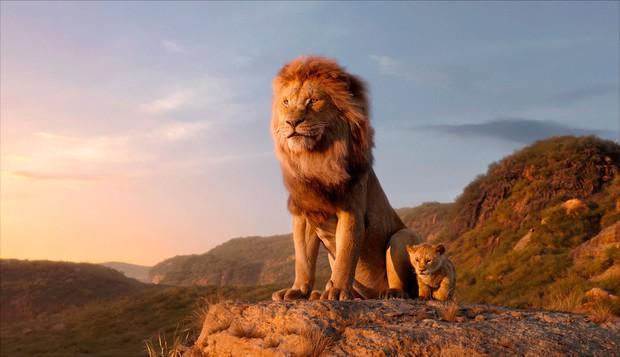 """Khui ngay loạt tọa độ có thật trong siêu phẩm """"The Lion King"""" 2019: Toàn cảnh đẹp thiên nhiên hoành tráng bậc nhất thế giới! - Ảnh 3."""