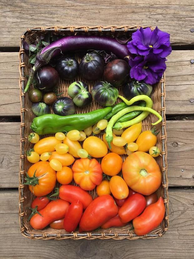 Không những sở hữu khu vườn với đủ loại rau xanh và trái ngọt, bà mẹ 2 con này còn xếp củ quả chụp ảnh siêu đẹp - Ảnh 16.