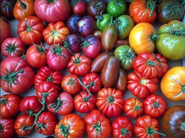 Không những sở hữu khu vườn với đủ loại rau xanh và trái ngọt, bà mẹ 2 con này còn xếp củ quả chụp ảnh siêu đẹp - Ảnh 17.