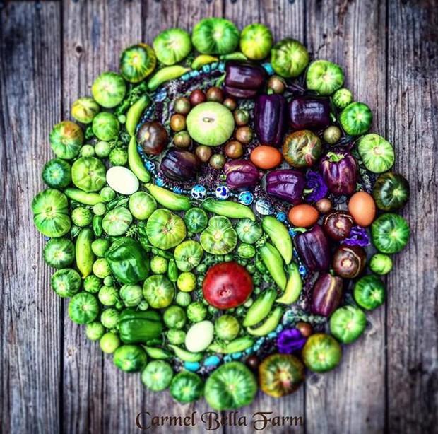 Không những sở hữu khu vườn với đủ loại rau xanh và trái ngọt, bà mẹ 2 con này còn xếp củ quả chụp ảnh siêu đẹp - Ảnh 21.