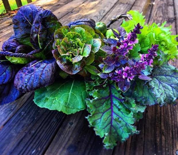 Không những sở hữu khu vườn với đủ loại rau xanh và trái ngọt, bà mẹ 2 con này còn xếp củ quả chụp ảnh siêu đẹp - Ảnh 4.