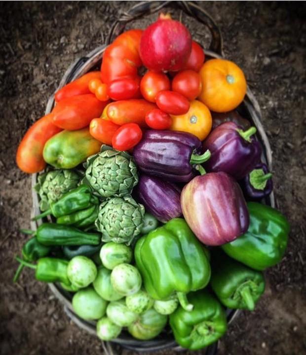 Không những sở hữu khu vườn với đủ loại rau xanh và trái ngọt, bà mẹ 2 con này còn xếp củ quả chụp ảnh siêu đẹp - Ảnh 7.