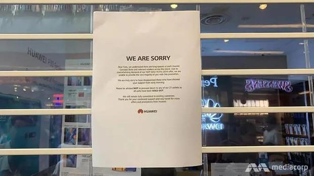 Háo hức xếp hàng dài chờ mua điện thoại Huawei giá rẻ, người dân Singapore giận dữ ra về tay trắng - Ảnh 3.