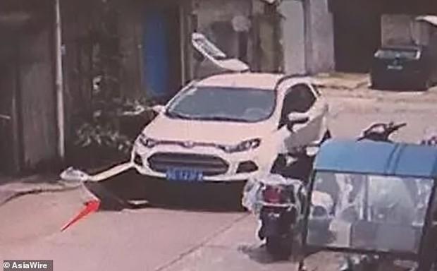 Để con gái 5 tuổi chui vào thùng carton chơi ngay giữa đường, chỉ trong nháy mắt bố mẹ đã hoảng loạn kêu cứu vì tai nạn hy hữu - Ảnh 3.